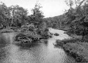 This photograph of the Wanaque River and the one preceding of West Brook above the Falls taken by Vernon Royle.